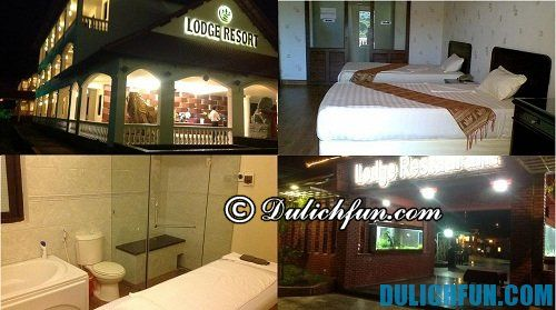 Đắk Nông Lodge Resort