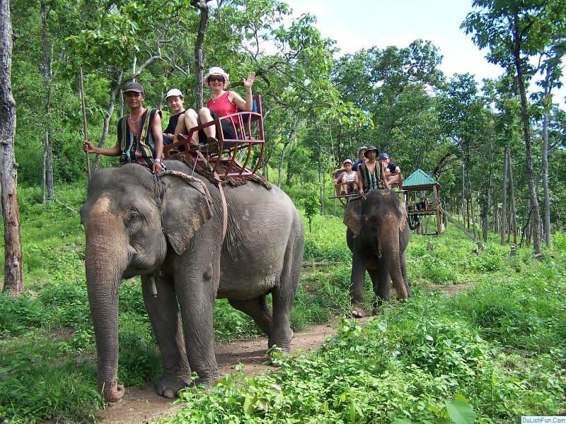 Cưỡi voi tại vườn quốc gia Yok Đôn